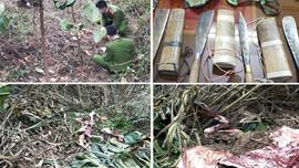 Thanh Hóa: Bắt nhóm đối tượng trộm cắp trâu bò liên tỉnh