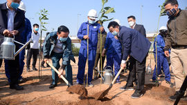 """Bộ TN&MT phối hợp với TP Hà Nội phát động """"Tết trồng cây đời đời nhớ ơn Bác Hồ Xuân Tân Sửu 2021"""""""