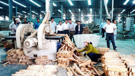 Quảng Nam: Nhân rộng các mô hình sản xuất và tiêu dùng bền vững