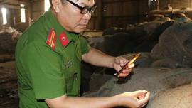 Thái Bình: Nhiều vi phạm trong lĩnh vực TN&MT, Febecom tiếp tục bị xử phạt