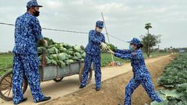 BTL Vùng Cảnh sát biển 1 hỗ trợ tiêu thụ nông sản cho bà con nông dân huyện Vĩnh Bảo
