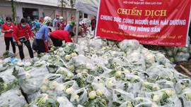 Hội Chữ thập đỏ Lào Cai chung tay cùng người dân Hải Dương giải cứu nông sản