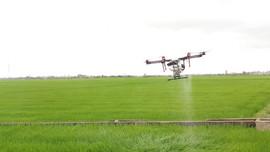 Nhân rộng mô hình máy bay không người lái phun thuốc bảo vệ thực vật tại Huế