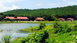 """Bảo tồn hệ sinh thái rừng nguyên sinh """"đẩy"""" du lịch phát triển"""