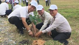 Bến Tre: Tiếp tục hưởng ứng trồng 10 triệu cây xanh
