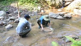 Trung Trung Bộ: Hiệu quả từ phương pháp trọng sa trong tìm kiếm khoáng sản