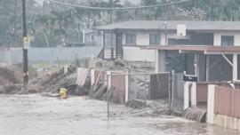 Hawaii ban bố tình trạng khẩn cấp do lũ lụt