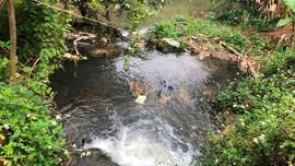 Mai Sơn – Sơn La: Kịp thời xác minh nguyên nhân nước suối Nậm Pàn có dấu hiệu ô nhiễm