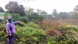 Ninh Bình: Dân tố Chủ tịch UBND xã Mai Sơn có nhiều vi phạm về đất đai