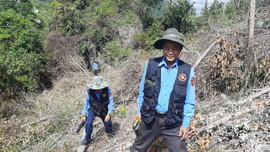 Khánh Hòa: Vụ phá rừng Suối Tân - Kiểm điểm, xử lý trách nhiệm cán bộ liên quan