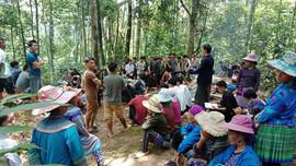 Lào Cai: Nghi lễ cúng rừng của người Mông Si Ma Cai được công nhận di sản văn hóa phi vật thể quốc gia
