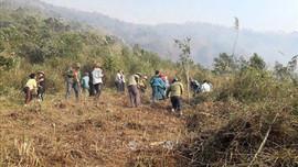 Lai Châu: Quyết liệt các biện pháp quản lý bảo vệ và phòng cháy, chữa cháy rừng