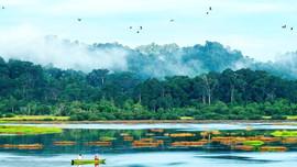 Làm hòa với thiên nhiên - Nhiệm vụ khẩn cấp bảo vệ môi trường