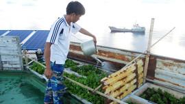 """Kỷ niệm 12 năm ngày thành lập Vùng 2 Hải quân (19/3//2009-19/3/2021): Ở nơi nước ngọt chia theo """"khẩu phần"""""""