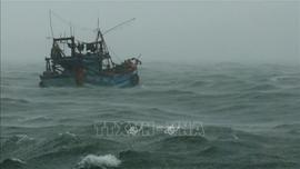 Chủ động ứng phó với gió mùa Đông Bắc và sóng lớn trên biển