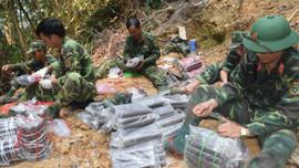 Đà Nẵng: Xác lập vùng quản lý rừng nghiêm ngặt