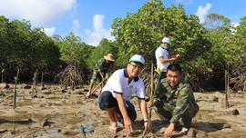 Bà Rịa - Vũng Tàu: Bảo vệ vùng đất ngập nước, phát triển bền vững đa dạng sinh học
