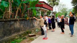 Nông Cống (Thanh Hóa): Dân khổ vì trại chăn nuôi gây ô nhiễm