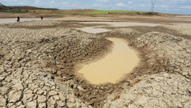 Thủ tướng chỉ đạo ứng phó xâm nhập mặn, thiếu nước tại ĐBSCL