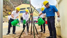 PC Điện Biên sẽ trồng 1.010 cây xanh hưởng ứng Tết trồng cây
