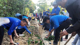 Thừa Thiên - Huế: Thanh niên, phụ nữ vùng cao bảo vệ môi trường