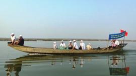 Thả hơn 10 vạn tôm sú và cua giống xuống phá Tam Giang để tái tạo nguồn lợi thủy sản