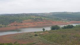 Đắk Nông: Kiểm tra vụ việc tự ý mở đường lấp rừng phòng hồ tại thuỷ điện Đắk R'Tih