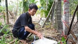 Hàng chục giếng nước bốc mùi và đổi màu bất thường ở Quảng Ngãi: Nghi do nhiễm phèn
