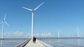 Xây dựng lộ trình sử dụng năng lượng tái tạo