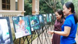 Nâng cao nhận thức bảo tồn thiên nhiên Vườn quốc gia Pù Mát cho các học sinh