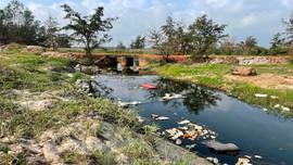 Quảng Bình: Nước thải đục ngầu, bốc mùi hôi thối nồng nặc từ ao nuôi tôm dọc bờ biển