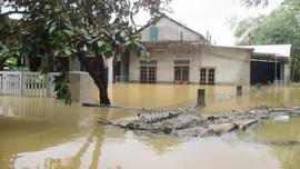 Hơn 1,2 tỷ đồng xây dựng khả năng chống chịu với lũ lụt cho cộng đồng tại Thừa Thiên Huế