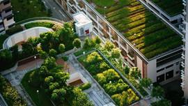 LHQ kêu gọi các thành phố nắm bắt cơ hội hành động khí hậu, phát triển bền vững