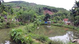 Đất vườn, ao chỉ được đền bù bằng giá đất nông nghiệp