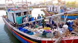 Ninh Bình tăng cường bảo vệ, tái tạo nguồn lợi thủy sản
