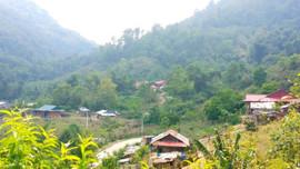 Dịch vụ môi trường rừng góp phần phát triển kinh tế các dân tộc thiểu số