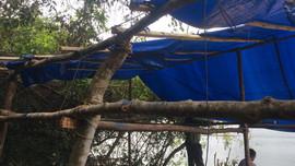 Bình Định: Lâm tặc tấn công cán bộ quản lý rừng và đốt lán trại