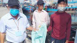 TP Đà Nẵng: Ngư dân gom rác, xóa điểm nóng ô nhiễm Thọ Quang