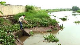 Ninh Bình: Tập trung bảo vệ nguồn nước trước nguy cơ xâm nhập mặn
