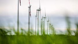 Ngành năng lượng tái tạo tăng trưởng vượt bậc vào năm 2020