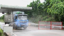 Yên Bái: Yêu cầu lái xe chở hàng hóa phải thực hiện nghiêm công tác phòng chống dịch