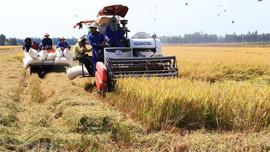 Hà Nội: Phát triển kinh tế gắn với bảo vệ môi trường, chủ động hội nhập quốc tế