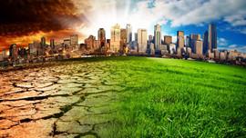 Hoàn thiện chính sách thực hiện cam kết quốc tế về biến đổi khí hậu và bảo vệ tầng ô-dôn