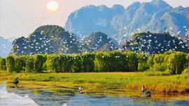 Hướng tới thập kỷ phục hồi hệ sinh thái tại Việt Nam
