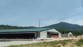 Hà Tĩnh: Phạt trang trại chăn nuôi hơn 400 triệu đồng do vi phạm trong sử dụng đất