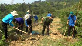 Than Uyên (Lai Châu): Phát huy sức trẻ trong bảo vệ môi trường