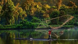 Liên Hợp quốc kêu gọi hành động toàn cầu để chống lại các mối đe dọa môi trường