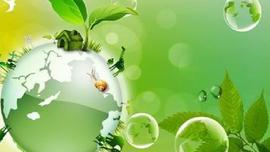 Ninh Bình: Hưởng ứng Tháng hành động vì môi trường gắn với phòng, chống dịch Covid-19