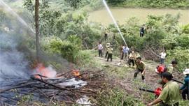 Ninh Bình chủ động phòng, chữa cháy rừng mùa cao điểm