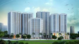 Công khai các dự án nhà ở hình thành trong tương được giao dịch